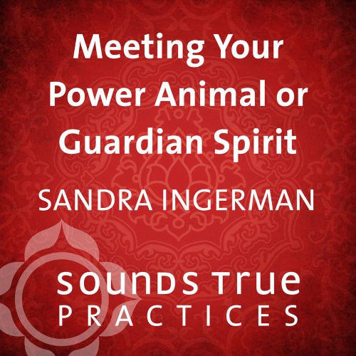 Meeting your Power Animal or Guardian Spirit